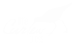 LittleCurlew_png